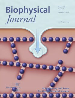 Biophysical Journal, November 2013